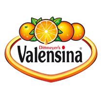 aa-logo-valensina
