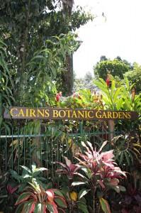 130714-Botanical-Gardens-Cairns-01