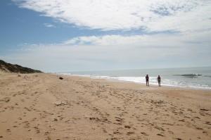 131102-golden-beach-017